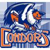 BAK Condors
