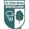 SV Grun-Weiss Brieselang