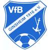 VfB金斯海姆
