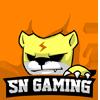 SN Gaming