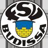 FSV 巴迪莎